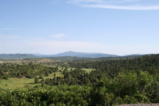 93 D Country Road 342, Canones, Chama, NM 87520 (MLS #201603092) :: The Very Best of Santa Fe
