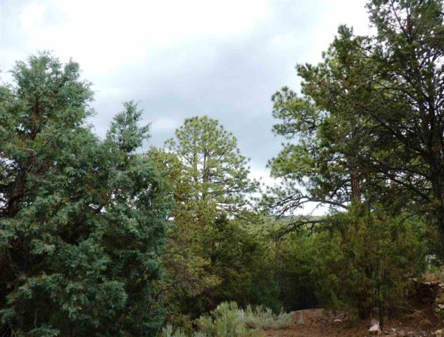 1297 N Summit Drive, Santa Fe, NM 87501 (MLS #201603188) :: The Desmond Group