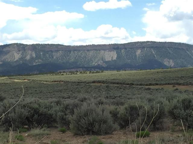 Unit 7 Tr 194, El Vado Lake S/D, Tierra Amarilla, NM 87575 (MLS #201603255) :: The Desmond Group