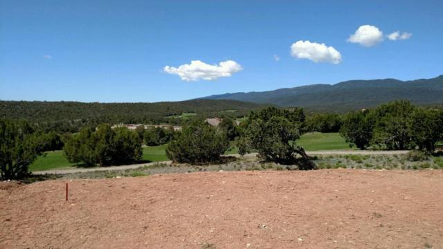 25 Hogan Ct, Sandia Park, NM 87047 (MLS #201603619) :: The Desmond Group