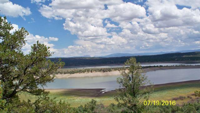 Lot 19 & 20 County Road 322, El Vado, NM 87520 (MLS #201603630) :: The Very Best of Santa Fe