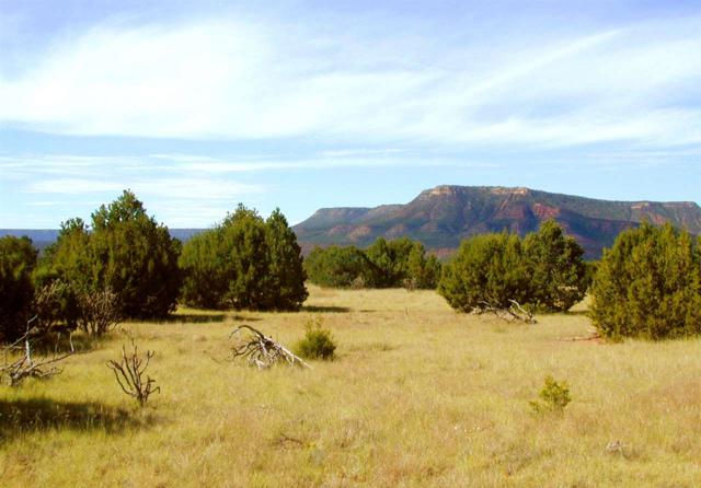 Ranchos Del Rito, Lot 4, San Jose, NM 87565 (MLS #201603841) :: The Desmond Group