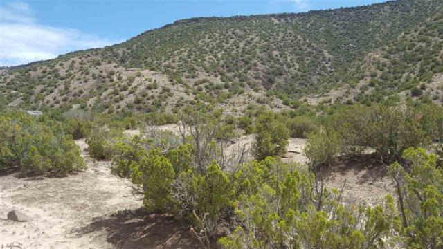 Lot 3, Bloc 3, Cedar Ridge Subdivision, Ojo Caliente, NM 98749 (MLS #201603991) :: The Desmond Group