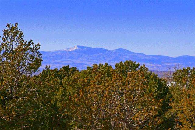 Brownell Howland Rd, Santa Fe, NM 87501 (MLS #201700848) :: The Desmond Group