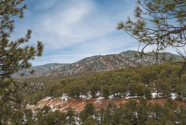1433 Tesuque Creek Rd, Lot 78, Santa Fe, NM 87501 (MLS #201701154) :: Deborah Cox & Associates