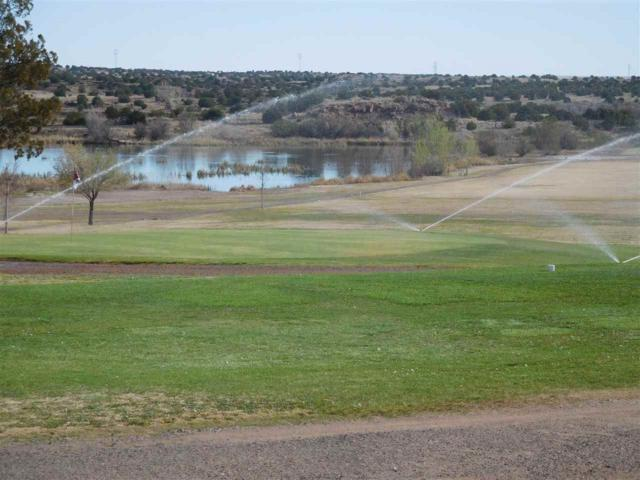 Santa Rosa Golf Course Property, Santa Rosa, NM 88435 (MLS #201701760) :: The Desmond Group
