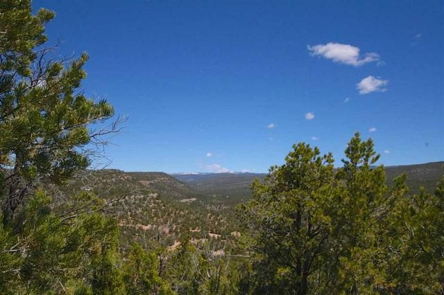 M1 Hidden Valley Ranch Road, San Ysidro, NM 87538 (MLS #201701909) :: The Desmond Group