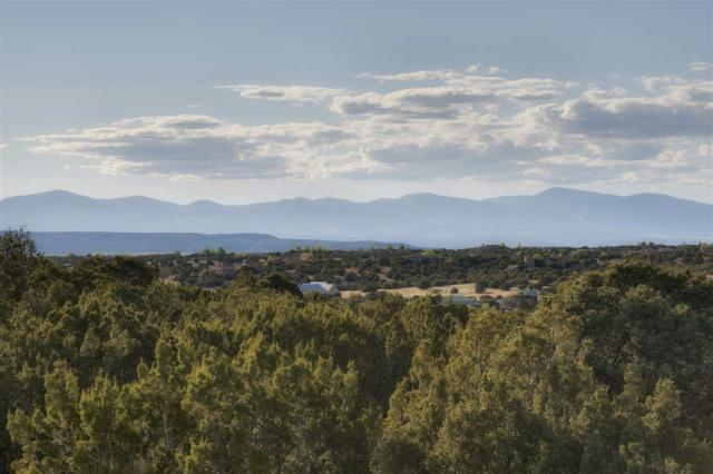 45 Sonrisa Trail, Santa Fe, NM 87506 (MLS #201701923) :: The Very Best of Santa Fe
