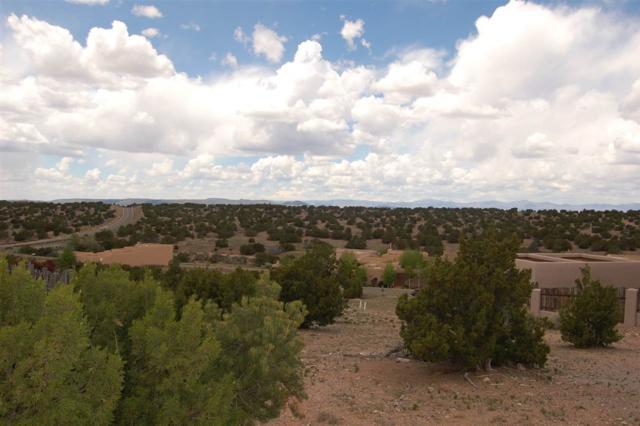 17 Camino Barranca, Lot 450, Santa Fe, NM 87507 (MLS #201701989) :: DeVito & Desmond