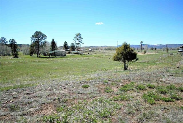 Block 11 Lot 4 Rio Chama Estates, Chama, NM 87520 (MLS #201701998) :: The Very Best of Santa Fe