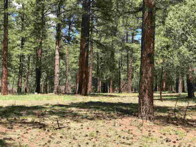Block 2, Lot 7, Brazos Estates, Chama, NM 87520 (MLS #201702163) :: The Very Best of Santa Fe
