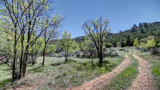 1596 Upper Canyon Road, Santa Fe, NM 87501 (MLS #201702460) :: The Very Best of Santa Fe