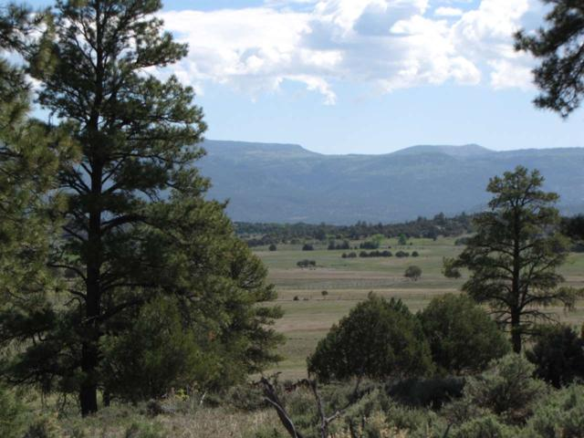 Garth Tract, Longhorn Estates, Rutheron, NM 87551 (MLS #201702765) :: The Very Best of Santa Fe