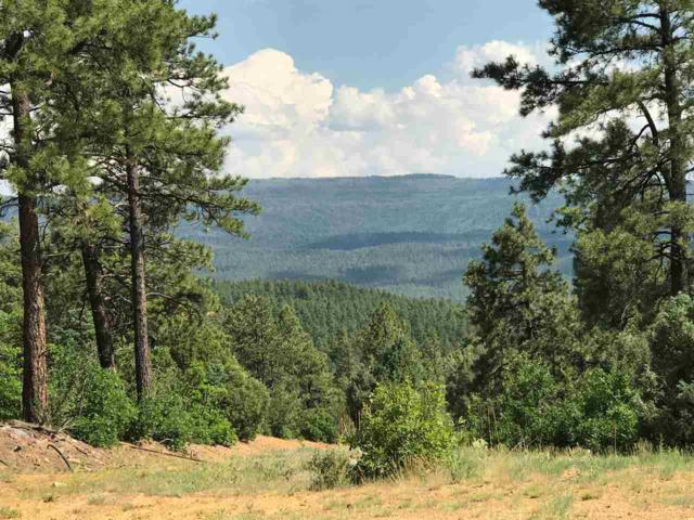 0 Bobcat Run 2, Ticonderoga S/D, Chama, NM 87520 (MLS #201703081) :: Summit Group Real Estate Professionals
