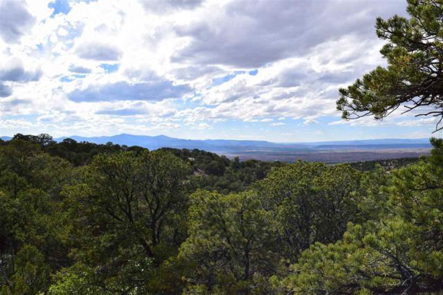 17 Canon Del Cerro (Lot 3 Cerro Pinon), Cundiyo, NM 87522 (MLS #201703090) :: The Desmond Hamilton Group