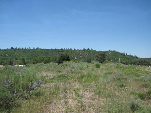 Lot 6 Block 11 Unit 1 Rio Chama Estates Rio Chama Estat, Chama, NM 87520 (MLS #201703164) :: The Very Best of Santa Fe