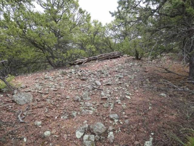 3266 Paseo Del Monte, Santa Fe, NM 87501 (MLS #201703418) :: Deborah Cox & Associates