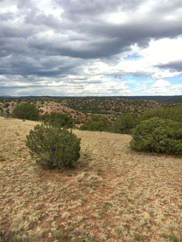 285 New Moon Overlook, Santa Fe, NM 87540 (MLS #201703457) :: The Desmond Group