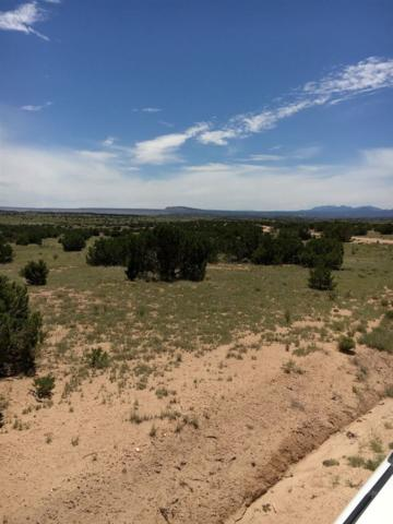 140 Thornton Ranch, Lamy, NM 87540 (MLS #201703647) :: The Desmond Group