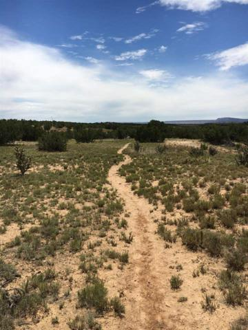 7 Vereda De Los Angeles, Lamy, NM 87540 (MLS #201703651) :: The Desmond Group