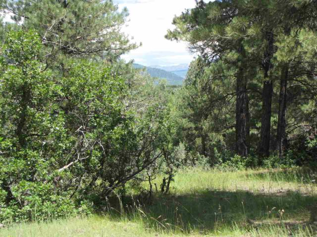 23B Indian Paintbrush Dr, Chama, NM 87520 (MLS #201703728) :: The Bigelow Team / Realty One of New Mexico