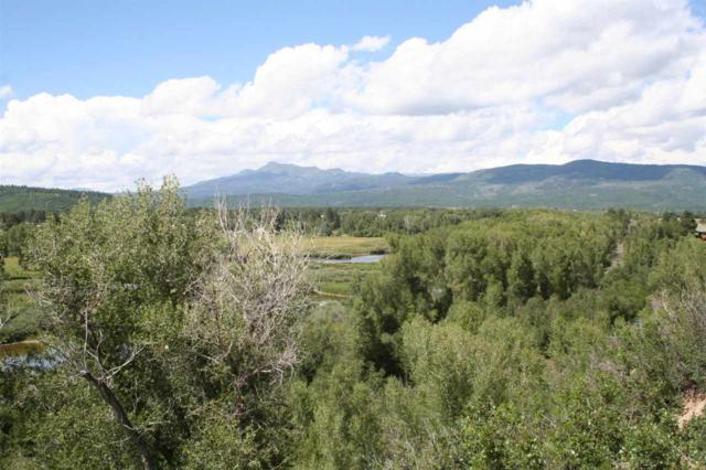 Larks Spur Way, Loc Lakes On The Ch, Chama, NM 87520 (MLS #201703875) :: The Bigelow Team / Realty One of New Mexico