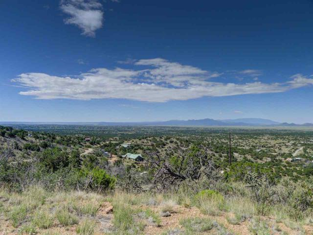109 Coyote Crossing, Santa Fe, NM 87508 (MLS #201703990) :: The Desmond Group