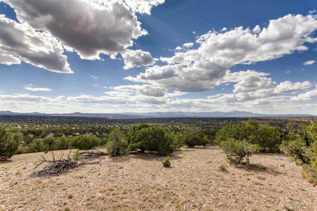 87 Calle Josephina, Santa Fe, NM 87506 (MLS #201704135) :: The Desmond Group