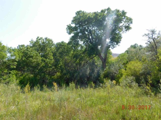 TBD Hwy 84, Chili, NM 87537 (MLS #201704294) :: The Desmond Group