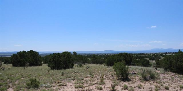 85 Cerro Alto Road, Lamy, NM 87540 (MLS #201704341) :: The Very Best of Santa Fe