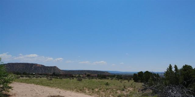 81 Cerro Alto Road, Lamy, NM 87540 (MLS #201704342) :: The Very Best of Santa Fe