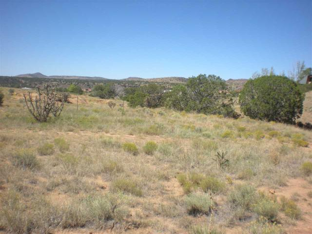 11 Calle De Carlotta, Santa Fe, NM 87507 (MLS #201704577) :: The Very Best of Santa Fe