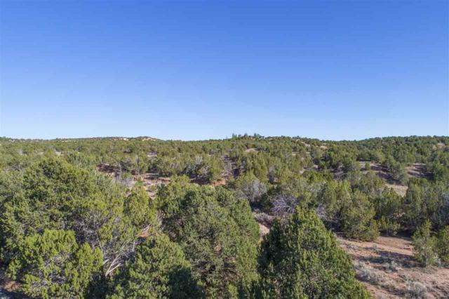 70 Estrada Calabasa East Lot 58, Santa Fe, NM 87506 (MLS #201704731) :: The Desmond Group