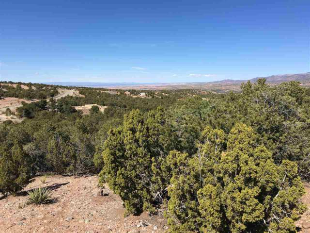 2955 Broken Sherd Trail -Lot 146, Santa Fe, NM 87506 (MLS #201704753) :: DeVito & Desmond