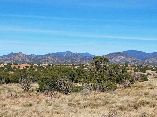 65 Mejor Lado, Santa Fe, NM 87508 (MLS #201705047) :: The Desmond Group