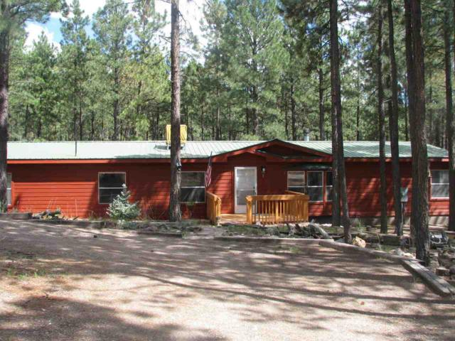 4 Mesa Verde, Jemez Springs, NM 87025 (MLS #201705157) :: The Desmond Group
