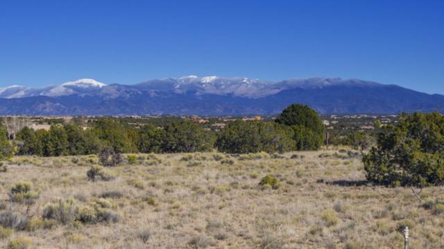 2 Lookout, Santa Fe, NM 87506 (MLS #201705286) :: Deborah Cox & Associates