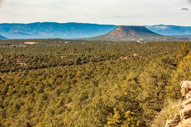 Santa Fe Trail Ranch, Las Vegas, NM 87701 (MLS #201705369) :: DeVito & Desmond