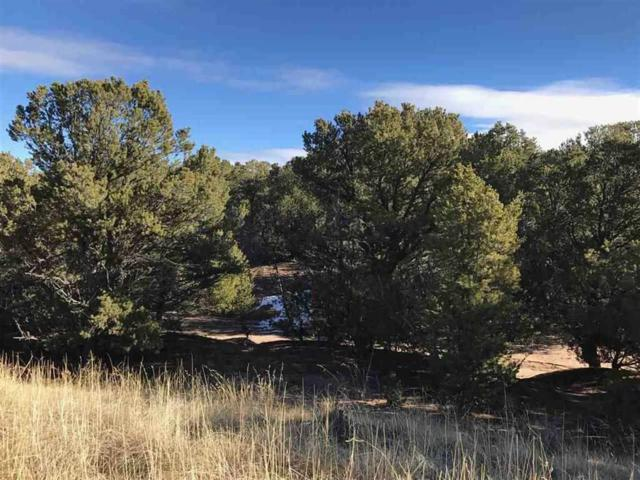 308 Pawprint Trail, Santa Fe, NM 87506 (MLS #201705426) :: DeVito & Desmond