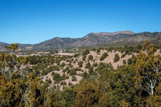8 Entrada Corta, Santa Fe, NM 87506 (MLS #201705485) :: The Desmond Group
