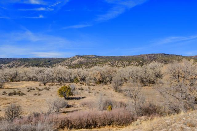 854 County Road 41, Velarde, NM 87582 (MLS #201705520) :: The Desmond Group