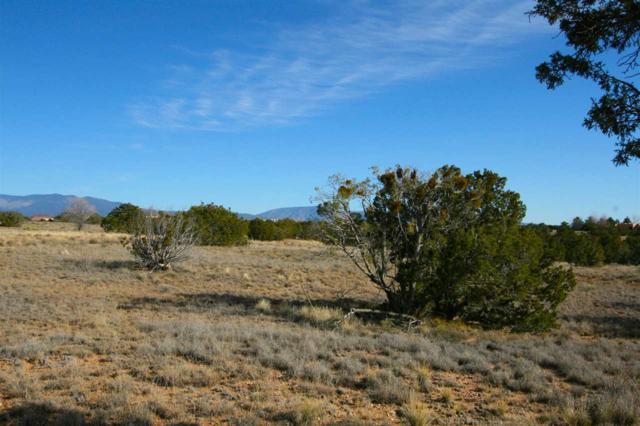 56 Chisholm Trail, Santa Fe, NM 87506 (MLS #201705536) :: The Very Best of Santa Fe