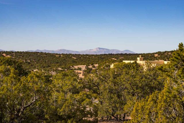 1669 Via Bosque, Santa Fe, NM 87506 (MLS #201705579) :: The Desmond Group