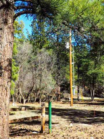 36A 1751 Millstone Subdivision Millstone Acres, Chama, NM 87520 (MLS #201705598) :: The Very Best of Santa Fe