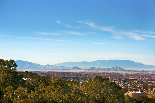 1040 Sierra Del Norte, Santa Fe, NM 87501 (MLS #201705634) :: DeVito & Desmond