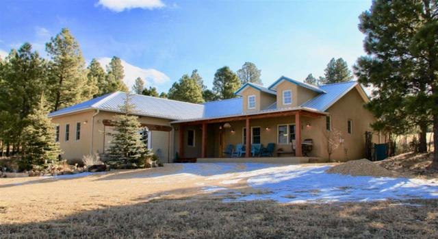 318 County Road A011, Mora, NM 87732 (MLS #201705705) :: The Very Best of Santa Fe