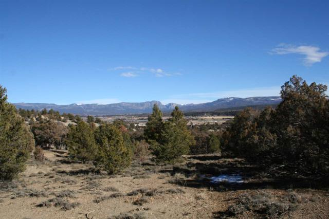 Tract 10-A Camino Thomas, Vista De Heron, Tierra Amarilla, NM 87575 (MLS #201800094) :: Summit Group Real Estate Professionals