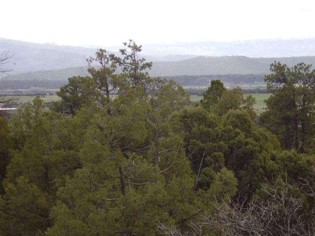TBD Turkey Trail, Laguna Vista, Tierra Amarilla, NM 87575 (MLS #201800106) :: Berkshire Hathaway HomeServices Santa Fe Real Estate