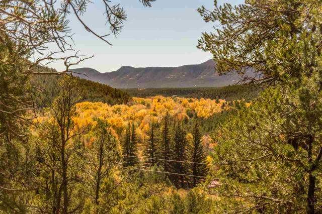 762 New Mexico Hwy 63, Pecos, NM 87552 (MLS #201800583) :: The Very Best of Santa Fe