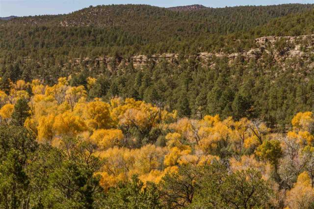 762 New Mexico Hwy 63, Pecos, NM 87552 (MLS #201800584) :: The Very Best of Santa Fe